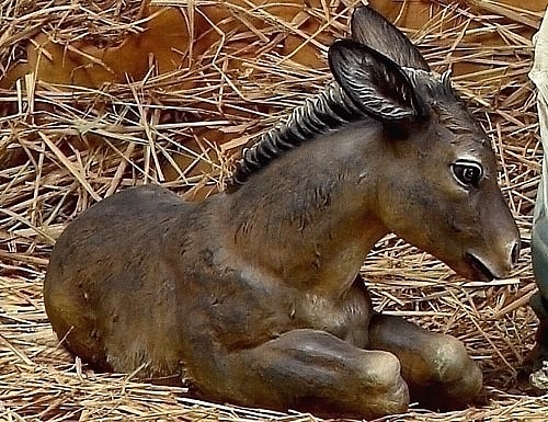 Little Garden Donkey
