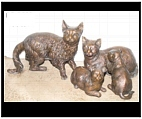 Bronze Family Cats