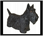 Hand Painted Scottish Terrier