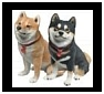 Shiba Inu Sculptures, Figurines and Gifts