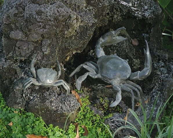 Set of Small and Large Bronze Crab Sculptures