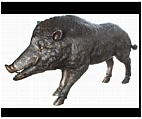 Extra Large Boar Sculpture - Bronze